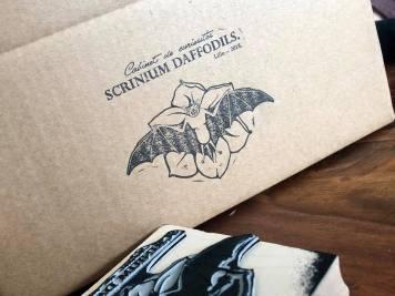 tampon en bois, tampon grand format, cabinet de curiosités, tampon 10x10 cm